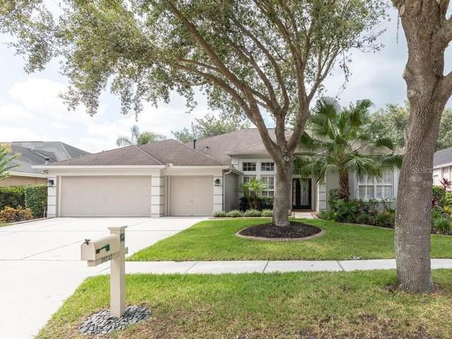 10242 Shadow Branch Drive, Tampa, FL 33647 (MLS #T3253792) :: Lockhart & Walseth Team, Realtors