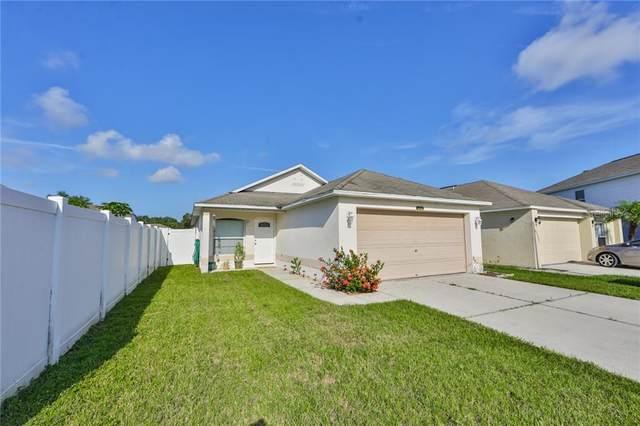 6237 Perdita Court, Wesley Chapel, FL 33545 (MLS #T3253819) :: Team Borham at Keller Williams Realty