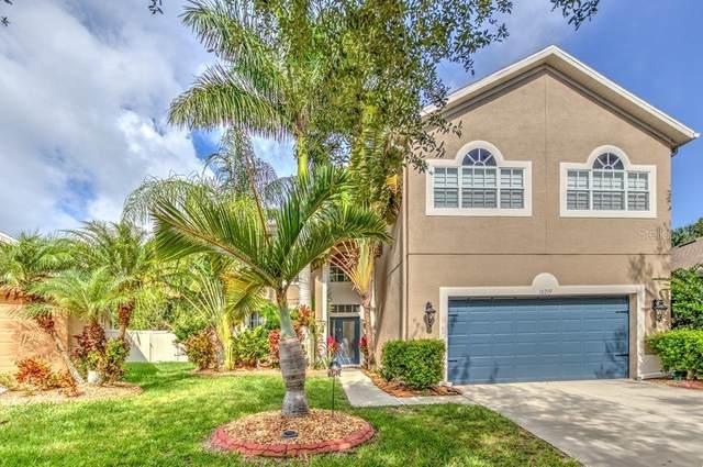 10219 Avelar Ridge Drive, Riverview, FL 33578 (MLS #T3253856) :: Team Bohannon Keller Williams, Tampa Properties