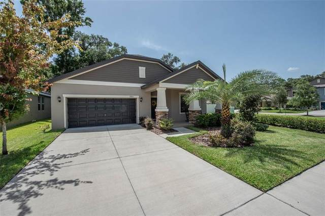 11803 Twilight Darner Place, Riverview, FL 33569 (MLS #T3253912) :: Team Borham at Keller Williams Realty