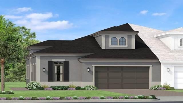 4325 Barletta Court, Wesley Chapel, FL 33543 (MLS #T3254134) :: Team Bohannon Keller Williams, Tampa Properties
