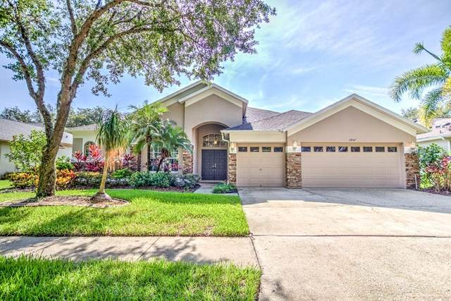 5957 Jaegerglen Drive, Lithia, FL 33547 (MLS #T3254194) :: The Duncan Duo Team