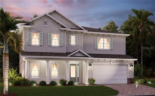 3915 W Leona Street, Tampa, FL 33629 (MLS #T3254348) :: Burwell Real Estate