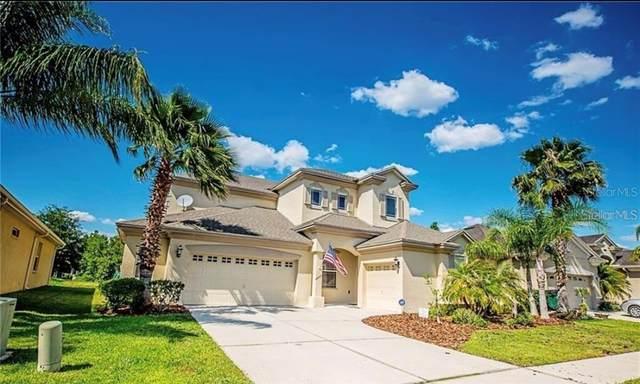3347 Grassglen Place, Wesley Chapel, FL 33544 (MLS #T3254454) :: Team Bohannon Keller Williams, Tampa Properties