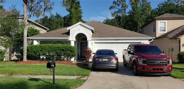 27309 Edenfield Drive, Wesley Chapel, FL 33544 (MLS #T3254467) :: Team Bohannon Keller Williams, Tampa Properties