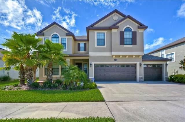10629 Mistflower Lane, Tampa, FL 33647 (MLS #T3254948) :: Dalton Wade Real Estate Group