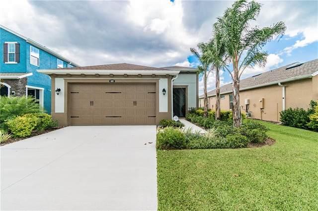 4689 Tramanto Lane, Wesley Chapel, FL 33543 (MLS #T3255084) :: Team Bohannon Keller Williams, Tampa Properties