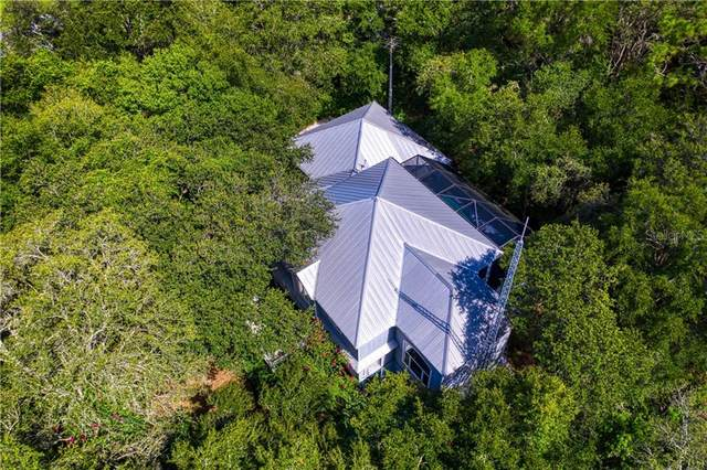 19906 Arbor Path Place, Lutz, FL 33559 (MLS #T3255258) :: GO Realty