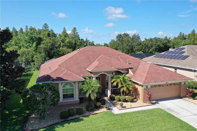 16506 Ivy Lake Drive, Odessa, FL 33556 (MLS #T3255610) :: Team Bohannon Keller Williams, Tampa Properties