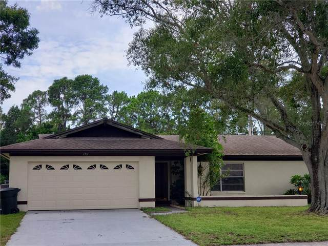 123 N Bay Hills Boulevard, Safety Harbor, FL 34695 (MLS #T3255658) :: Delta Realty Int