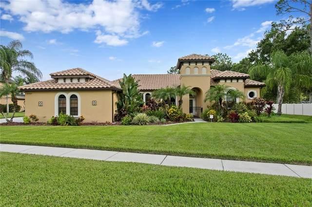 22404 Oakville Drive, Land O Lakes, FL 34639 (MLS #T3255911) :: Griffin Group