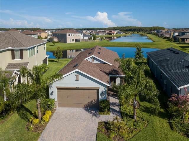 29035 Trevi Place, Wesley Chapel, FL 33543 (MLS #T3255970) :: Team Bohannon Keller Williams, Tampa Properties