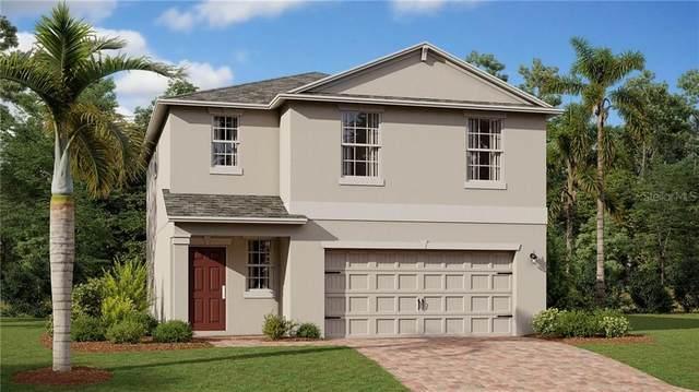 2845 Black Birch Drive, Ocoee, FL 34761 (MLS #T3255994) :: Team Bohannon Keller Williams, Tampa Properties