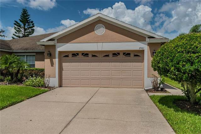 2901 Tanglewylde Drive, Land O Lakes, FL 34638 (MLS #T3256049) :: GO Realty