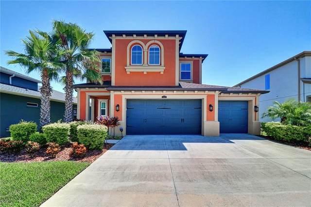 4028 Empoli Court, Wesley Chapel, FL 33543 (MLS #T3256125) :: Team Bohannon Keller Williams, Tampa Properties