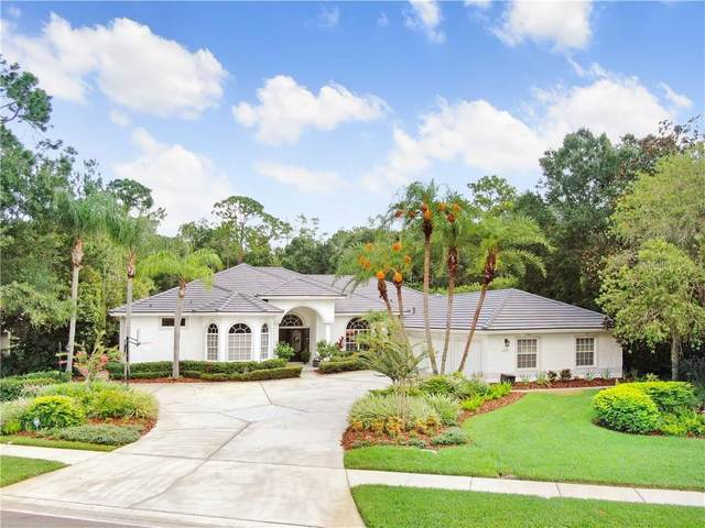 5247 Enclave Drive, Oldsmar, FL 34677 (MLS #T3256214) :: Delta Realty Int