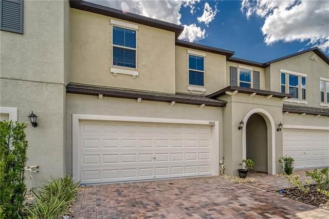 10012 Corso Milano Drive, Tampa, FL 33625 (MLS #T3256234) :: Cartwright Realty