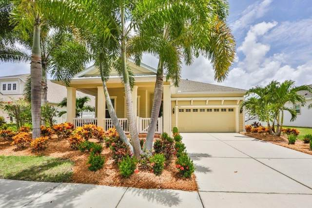 521 Manns Harbor Drive, Apollo Beach, FL 33572 (MLS #T3256251) :: The Duncan Duo Team