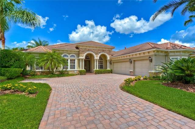 11804 Shire Wycliffe Court, Tampa, FL 33626 (MLS #T3256265) :: Cartwright Realty