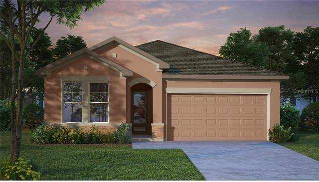 13905 Swallow Hill Drive, Lithia, FL 33547 (MLS #T3256308) :: Bridge Realty Group