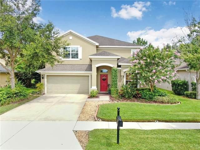 3433 Hickory Hammock Loop, Wesley Chapel, FL 33544 (MLS #T3256333) :: Team Bohannon Keller Williams, Tampa Properties