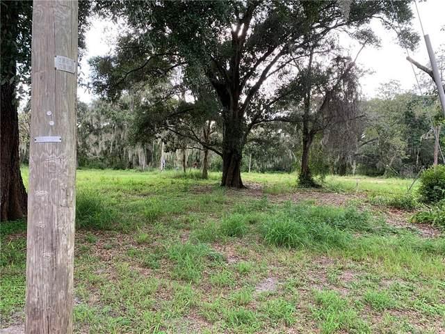 9905 Harold Bedford Road, Riverview, FL 33578 (MLS #T3256370) :: Team Bohannon Keller Williams, Tampa Properties