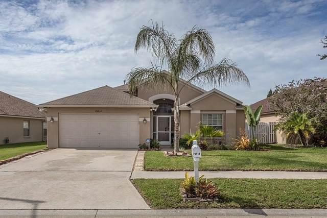 24514 Summer Nights Court, Lutz, FL 33559 (MLS #T3256418) :: Griffin Group
