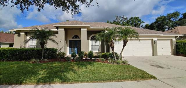 5115 Silver Charm Terrace, Wesley Chapel, FL 33544 (MLS #T3256486) :: Premier Home Experts