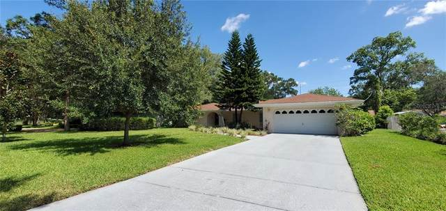 804 Bannockburn Avenue, Temple Terrace, FL 33617 (MLS #T3256505) :: Armel Real Estate