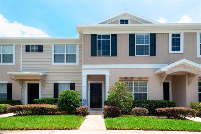 16224 Swan View Circle, Odessa, FL 33556 (MLS #T3256549) :: Team Bohannon Keller Williams, Tampa Properties