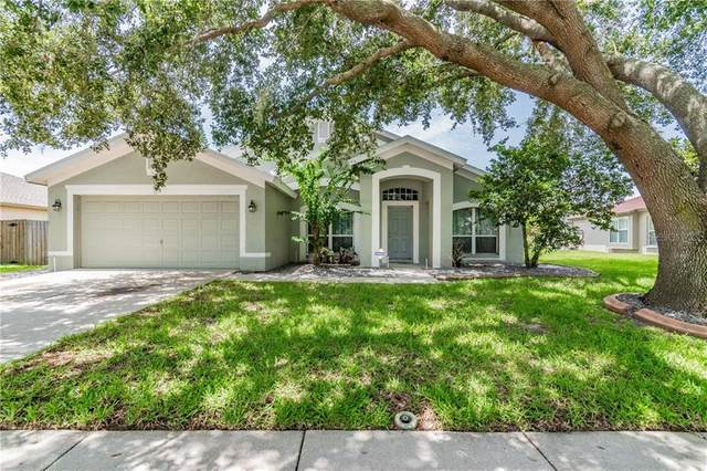 1615 Audubon Trail, Lutz, FL 33549 (MLS #T3256584) :: Premier Home Experts