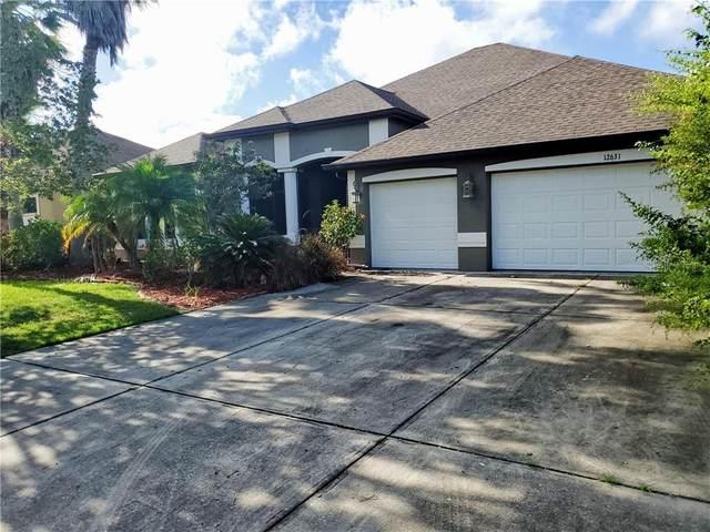 12631 20TH Street E, Parrish, FL 34219 (MLS #T3256602) :: EXIT King Realty