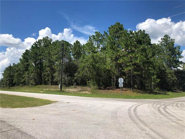 8559 N Deltona Boulevard, Citrus Springs, FL 34434 (MLS #T3256631) :: Bustamante Real Estate