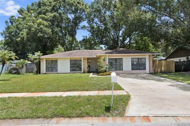 15812 Hound Horn Lane, Tampa, FL 33624 (MLS #T3256632) :: GO Realty