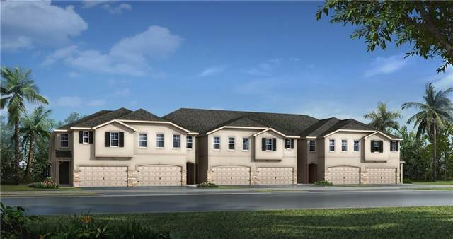 19280 Blue Pond Drive 16/1B, Lutz, FL 33558 (MLS #T3256652) :: Premier Home Experts