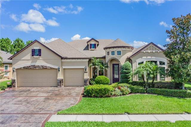 32241 Summerglade Drive, Wesley Chapel, FL 33545 (MLS #T3256658) :: Team Bohannon Keller Williams, Tampa Properties
