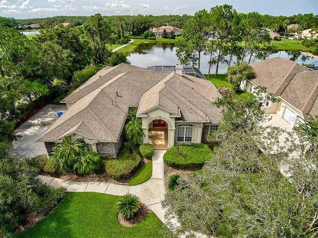 18002 Pinnacle Court, Tampa, FL 33647 (MLS #T3256679) :: Dalton Wade Real Estate Group