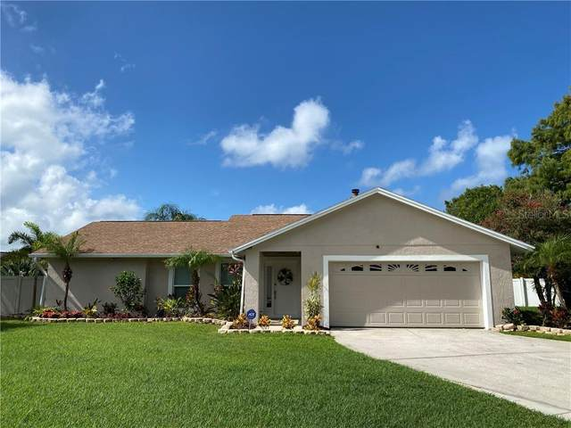 6701 Harbor View Way, Tampa, FL 33615 (MLS #T3256719) :: Team Bohannon Keller Williams, Tampa Properties