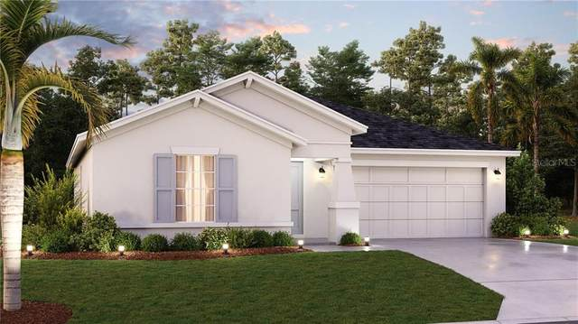 668 Peg Court, Saint Cloud, FL 34772 (MLS #T3256731) :: Cartwright Realty
