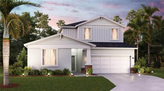 4131 Holstein Street, Saint Cloud, FL 34772 (MLS #T3256732) :: Dalton Wade Real Estate Group
