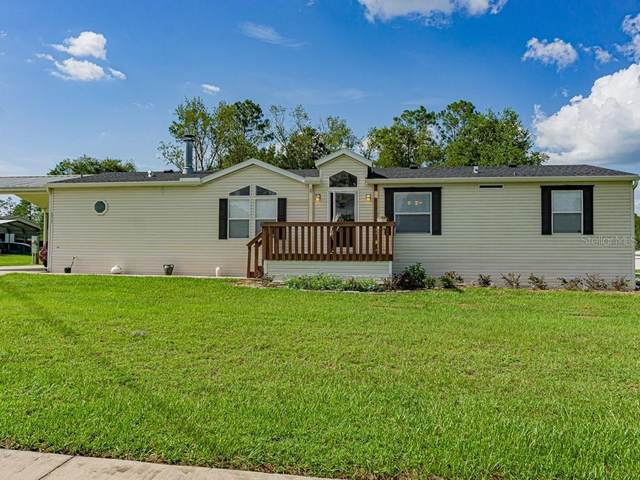 36147 Serbia Spruce Drive, Dade City, FL 33525 (MLS #T3256738) :: The Light Team
