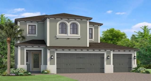 4895 Tivoli Drive, Wesley Chapel, FL 33543 (MLS #T3256760) :: Team Bohannon Keller Williams, Tampa Properties