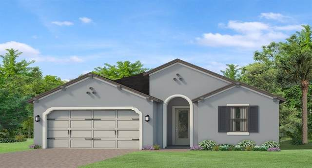 4881 Tivoli Drive, Wesley Chapel, FL 33543 (MLS #T3256773) :: Team Bohannon Keller Williams, Tampa Properties