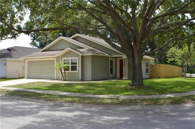 1774 Tinsmith Circle, Lutz, FL 33559 (MLS #T3256774) :: Premier Home Experts