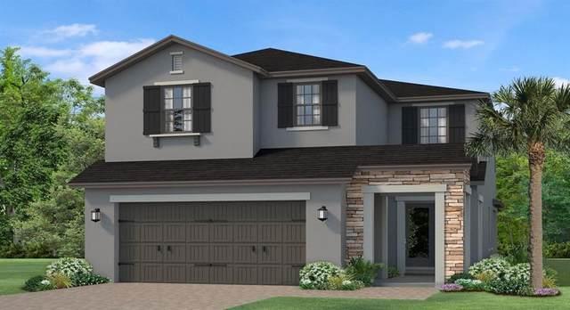 4635 San Martino Drive, Wesley Chapel, FL 33543 (MLS #T3256811) :: Team Bohannon Keller Williams, Tampa Properties