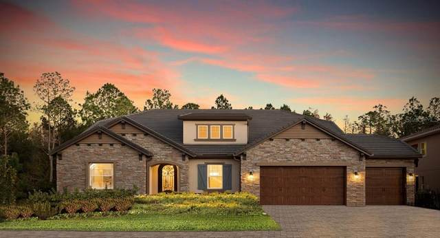 28374 Picana Lane, Wesley Chapel, FL 33543 (MLS #T3256814) :: Team Bohannon Keller Williams, Tampa Properties
