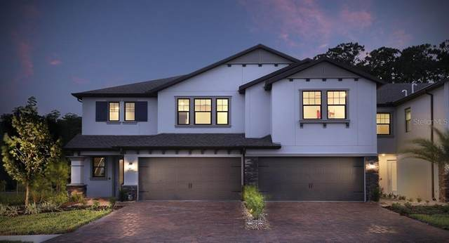 4784 Lagona Lane, Wesley Chapel, FL 33543 (MLS #T3256828) :: Premier Home Experts