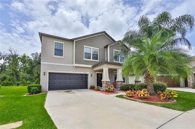 14081 Tropical Kingbird Way, Riverview, FL 33579 (MLS #T3256855) :: The Duncan Duo Team