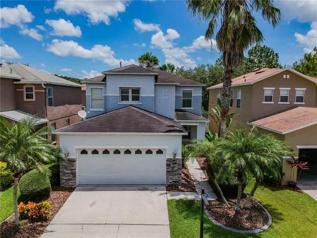 2348 Silvermoss Drive, Wesley Chapel, FL 33544 (MLS #T3256894) :: Team Bohannon Keller Williams, Tampa Properties