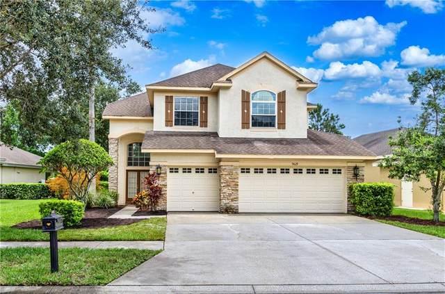 9629 Gretna Green Drive, Tampa, FL 33626 (MLS #T3257052) :: The Duncan Duo Team